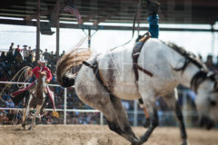 An inmate competes in the bareback riding event at the 47th annual Angola Prison Rodeo at the Louisiana State Penitentiary at Angola, LA, Sunday, October 9, 2011.