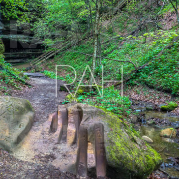 Mohican State Park Spring Hike to Big Lyons Falls