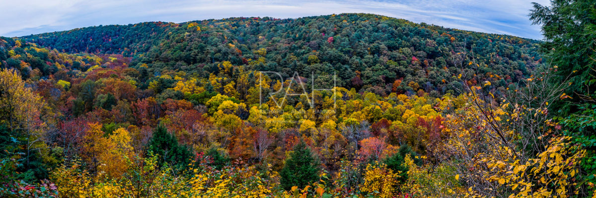 mohican gorge overlook in fall overcast day